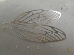 wings-cicada